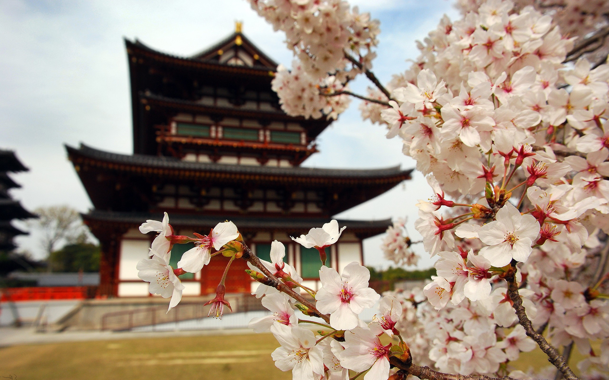 Du lịch Nhật Bản: KYOTO - OSAKA – HIROSHIMA - OKAYAMA 6 ngày