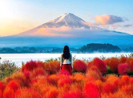 Du lịch Nhật Bản: Tokyo-Kawaguchi–Nagoya–Kyoto–Osaka, 6 ngày bay VN