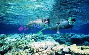 Du lịch Côn Đảo - Tìm về nơi hoang sơ