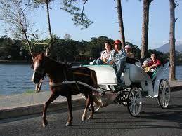 Du lịch Đà Lạt bằng xe ngựa
