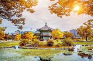 Du lịch Hàn Quốc 5 ngày: Seoul - Everland - Nami, bay JinAir
