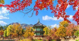 Du lịch Hàn Quốc: Seoul - Nami - Everland 5 ngày bay EZ