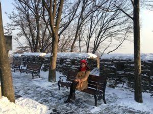 Du lịch Hàn Quốc: Seoul - Nami - Everland - Trượt Tuyết - Sauna 5 ngày (7C)