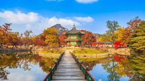 Du lịch Nhật Bản: Osaka - Kyoto - Nagoya - Fuji - Tokyo 6 ngày, BL