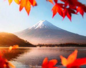 Du lịch Nhật Bản: Osaka - Kyoto - Phú Sỹ - Tokyo 6 ngày VN