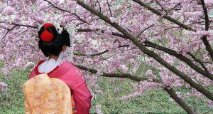 Du lịch Nhật Bản Tokyo - Hakone - Osaka - Kyoto 7 ngày