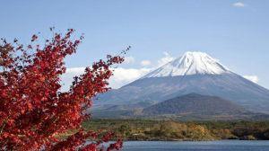 Du lịch Nhật Bản: Tokyo - Hakone - Phú Sỹ 5 ngày VJ