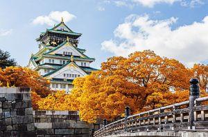 Du lịch Nhật Bản: Tokyo - Phú Sỹ - Kyoto - Osaka 6 ngày NH
