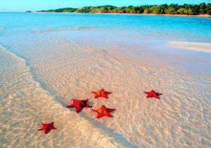 Du lịch Phú Quốc - Vinpearl - Rực rỡ mùa hè