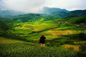 Du lịch: Hà Nội - Sapa 4 ngày
