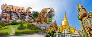 Du lịch Thái Lan: Bangkok - Pattaya, bay QR