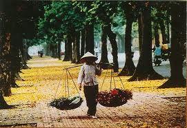Du lịch Hà Nội - Hạ Long - Bái Đính - Tam Cốc