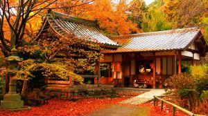 Du lịch Nhật Bản: Tokyo - Hankone - Phú Sỹ -  Odaiba 5 ngày ANA