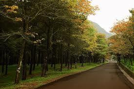 Du lịch Hà Nội - Vườn Quốc Gia Ba Vì